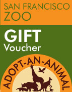 With an Adopt-an-Animal Gift Voucher, you'll receive a PDF voucher to provide to your gift recipient for online redemption. A Gift Voucher is the perfect way to give an animal adoption as a gift!